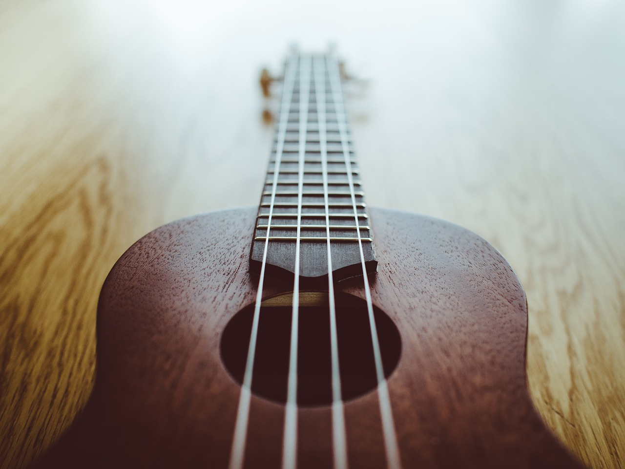 Find The Best Ukulele Strings For Your Uke!