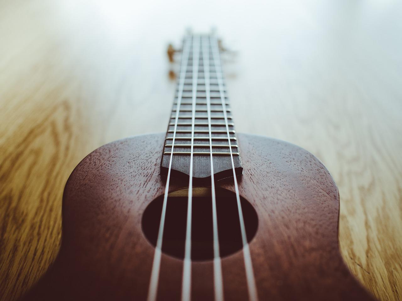 Find The Best Ukulele Strings For Your Uke!