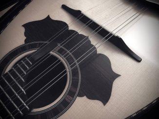 best mandolin pickups