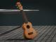ukulele humidifier