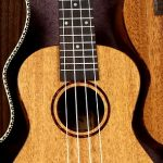 The Best Electric Ukuleles Reviewed and Rated